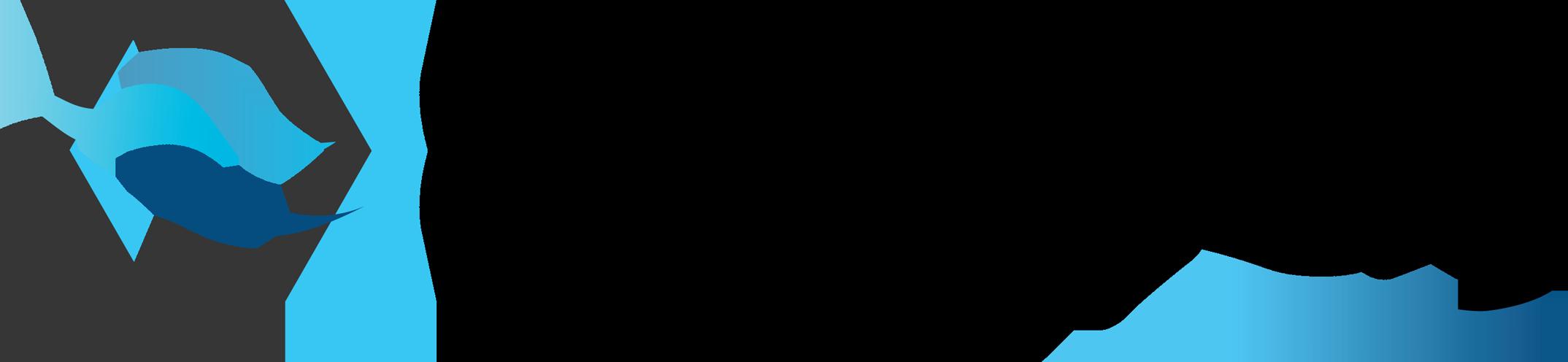 LOGO-CHILLPAY-WATERMARK